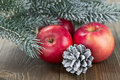 Christmas red apples, snow-covered cones Stock Image