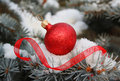 Christmas red ball with ribbon on christmas tree Stock Photo