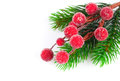 Christmas red berries with copy space on on white background Royalty Free Stock Photography