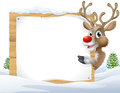 Christmas reindeer sign cartoon of a cute cartoon peering around a snowy and pointing Royalty Free Stock Images