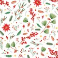 Christmas seamless pattern with holly leaves, poinsettia and mistletoe plants, pine cones and branches on white