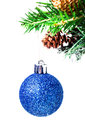 Christmas shiny blue ball on fir branches with decorations isol and cones isolated white Stock Image