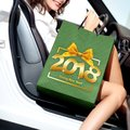 Christmas shopping, smiling woman with bag get in the car and ha Royalty Free Stock Photo