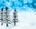 Christmas snow scene Royalty Free Stock Images