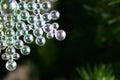 Christmas snowflake ornament translucent balls reflecting light and snowflakes Stock Photos