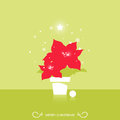 Christmas star poinsettia vector flower Stock Photos