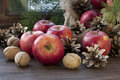 Christmas still life with apples and pine cones Royalty Free Stock Photo