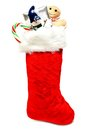 Christmas stocking filled with gifts and candy Stock Photography