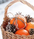 Christmas tangerines and pine cones at the snow in watlled basket with a bow from cord Royalty Free Stock Photo
