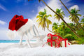 Christmas time two beachchairs with santa hat and gifts in snow before tropical background Stock Photography