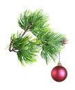 Christmas toy on fir tree branch isolated Stock Photos