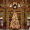 Christmas tree 1 Stock Photo