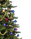 Christmas Tree Stock Photography