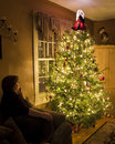 Christmas tree with admirer Royalty Free Stock Image