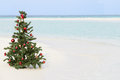 Christmas tree on beautiful tropical beach in the sun Royalty Free Stock Photography
