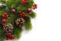 Christmas tree with berries Stock Photography