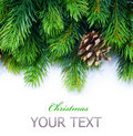 Christmas Tree Border Stock Photography