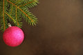 Christmas tree branch with purple ball Royalty Free Stock Photo