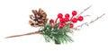 Christmas Tree Branch Red Berr...