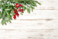 Christmas tree branch with red berries. Winter holidays Royalty Free Stock Photo