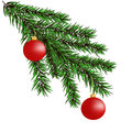 Christmas-tree branches Royalty Free Stock Photo