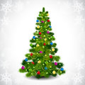 Christmas tree with colored balls Stock Image