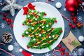 Christmas tree colorful festive salad Royalty Free Stock Photo