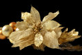Christmas tree decoration ornament magnolia in old gold flower made out of velvet and silk with reflection isolated on black Royalty Free Stock Photo