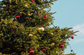 Christmas tree detail of a decorated with baubles and lights Royalty Free Stock Photo