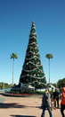 Christmas tree at disney s hollywood studios giant the entrance of walt world orlando fl Stock Photos
