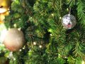 Christmas Tree fir close up decoration with big silver mirror ball has blur bokeh light background selective focus,has copy space Royalty Free Stock Photo