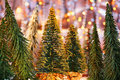 Christmas tree forest Stock Photo