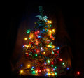 Christmas tree with garlands Royalty Free Stock Image
