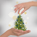 Christmas tree in hand Royalty Free Stock Photos