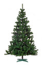 Christmas tree isolated Royalty Free Stock Photo