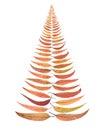 Australia Australian Christmas Tree Leaves Royalty Free Stock Photo