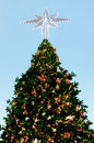 Christmas tree with lighting decorate and ornament Royalty Free Stock Photos