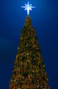 Christmas tree with lighting decorate and ornament Stock Photo