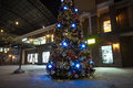 Christmas tree in lights on street at night Royalty Free Stock Photo
