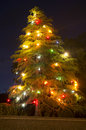 Christmas tree lit at night along the side of the road photo by rafael ben ari chameleons eye Royalty Free Stock Image