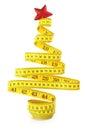 Christmas Tree Measure Tape