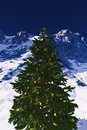 Christmas Tree in the Mountains Royalty Free Stock Photos