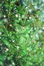 Christmas tree needles Royalty Free Stock Photo