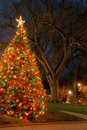Christmas tree at night Royalty Free Stock Photos