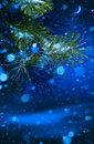 Christmas tree on night background art Royalty Free Stock Photo