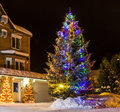 Christmas tree outside the house Royalty Free Stock Photo