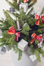 Christmas tree in plant pot Royalty Free Stock Image