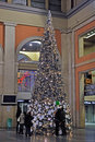 Christmas Tree in Porta Nuova, Turin Royalty Free Stock Photography