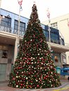 Christmas tree, Seattle downtown, shopping mall Royalty Free Stock Photo