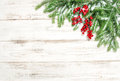 Christmas tree sprigs with red berries and snow. Winter holidays Royalty Free Stock Photo